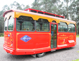 Grayline Quito City Explorer