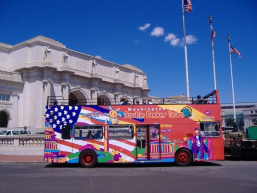 City Sightseeing Washington DC Hop On Hop Off 48 Hours