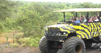 Monster Truck through the Orange Groves