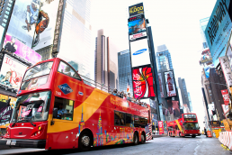 Gray Line CitySightseeing New York-Double Decker Freestyle New York +3 (FSNBC)