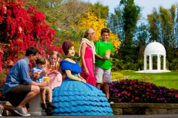 LEGOLAND Florida 1 Day Admission