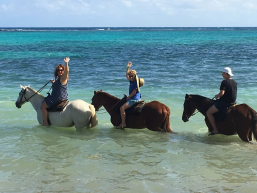 3 Hours Horse Back riding Tour in a private group escorted by driver/guide and Beach and swim